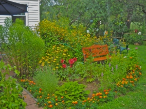 The patio garden. The bench is dedicated to our sister-in-law, who loved to exchange garden stories with us. Her spirit can visit and see what we're up to.