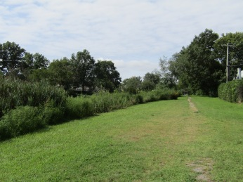 The Path along the Left Bank of Duffy's Creek, owned by the Town of Hempstead.
